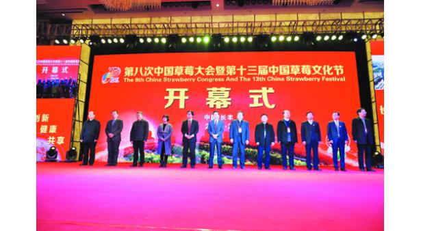 第八次中国草莓大会暨第十三届中国草莓文化节在长丰盛大开幕