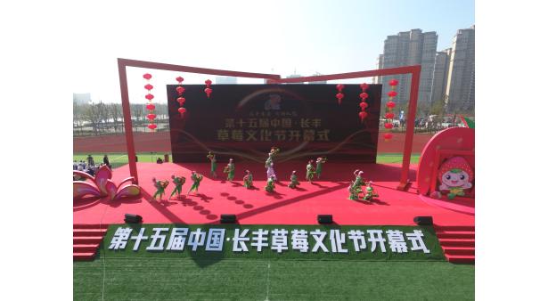 第十五届中国·长丰草莓文化节盛大开幕
