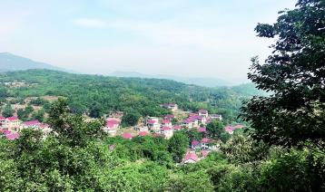 房干:中国最绿的村庄